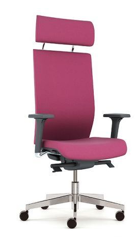Kind Executive Chair With Headrest And Adjustable Arms