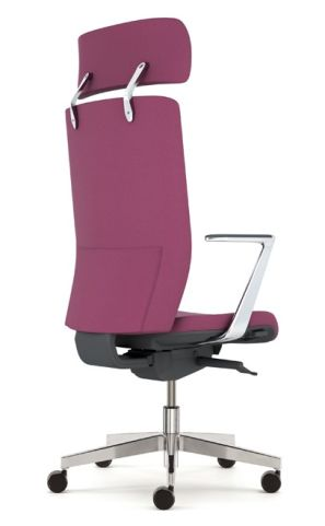 Kind Eexecutive Chair With Fixed Alumiuim Arms And Headrest