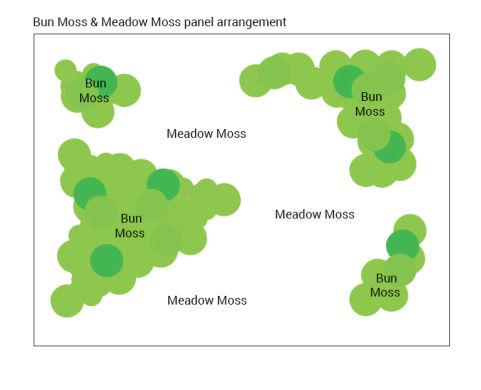 Meadow Moss Hybrid 17122019