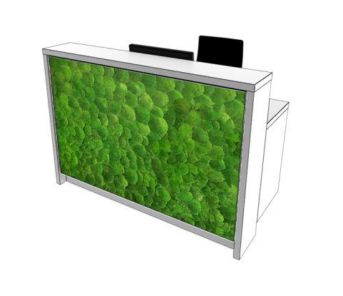 Moss Reception Desk Straight Office Reality
