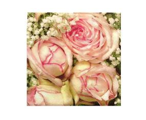 Pink Roses Luncheon Napkins - Royal Flower