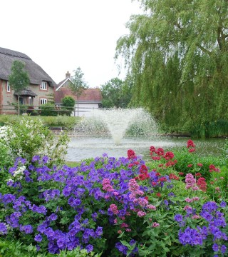 Water Garden Ltd 5-in-1 (2)