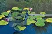 Pond Net
