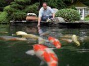 Fish Health