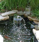 landscape fishpond