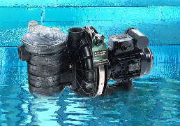 Self-Priming Pool Pumps