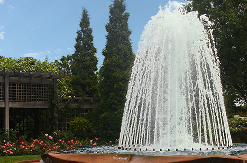 Fountain Spray Rings and Bars