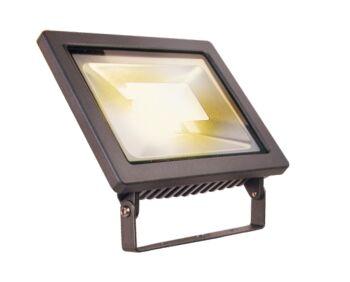 Outdoor LED 12V Floodlight - 12w