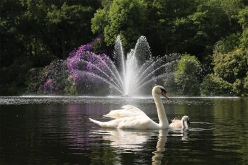 Equinox Floating Lake Fountains