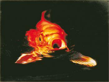 Koi Artwork - Red on Canvas