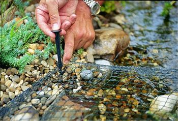Pond Cover Net with stakes - 4m x 8m