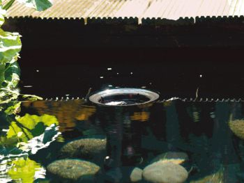 AquaSkim 40 Pond Skimmer