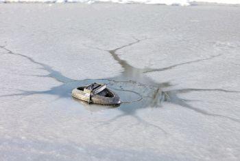 IceFree Thermo 200 Watt Pond Heater