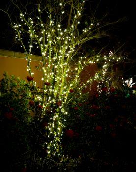 Linea LED Extension (Warm White) - 2w