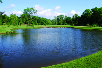 Diffused Lake Aeration System