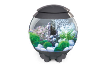 biOrb HALO Grey - 15 litre MCR Light