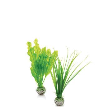 Lush Green - biOrb Decoration Pack