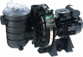 Sta-Rite Self-Priming Pool Pump 1.1KW